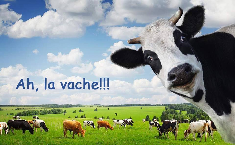8 французских устойчивых выражений с дословным переводом, которые покажутся любому иностранцу забавными